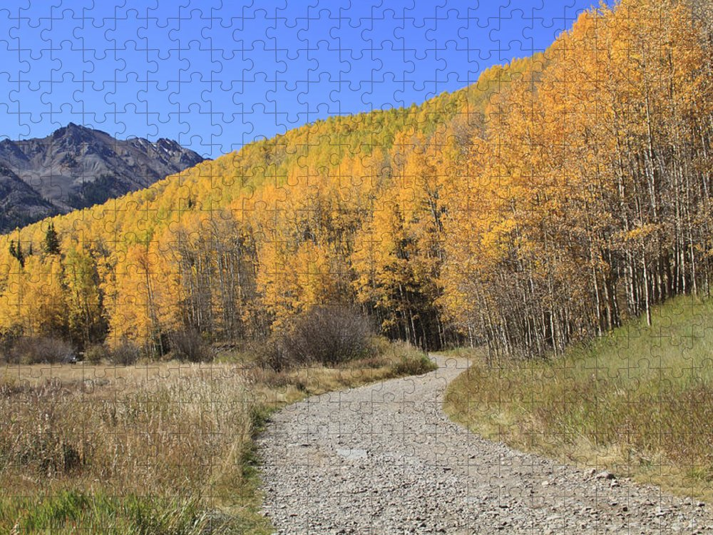 Scenics Puzzle featuring the photograph Dirt Road In The Elk Mountains, Colorado by John Kieffer