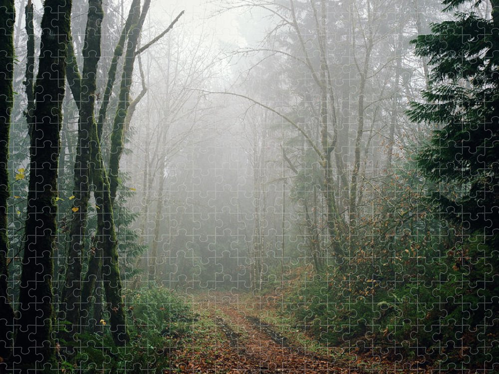Tranquility Puzzle featuring the photograph Dirt Road Leading Through Foggy Forest by Danielle D. Hughson
