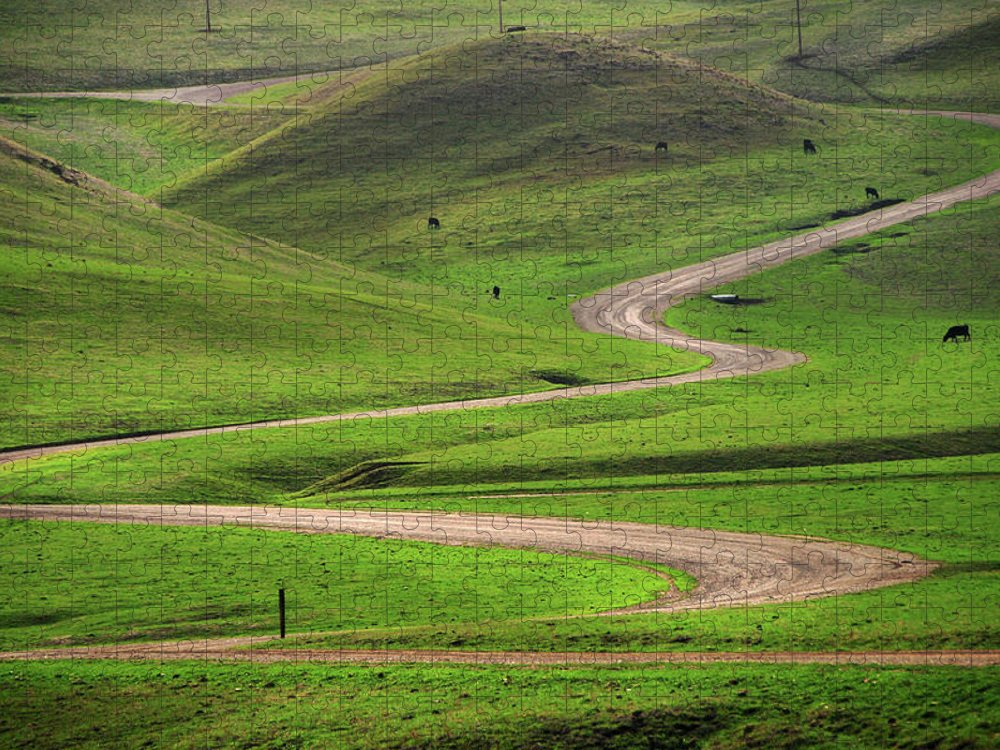 Tranquility Puzzle featuring the photograph Dirt Road Through Green Hills by Mitch Diamond