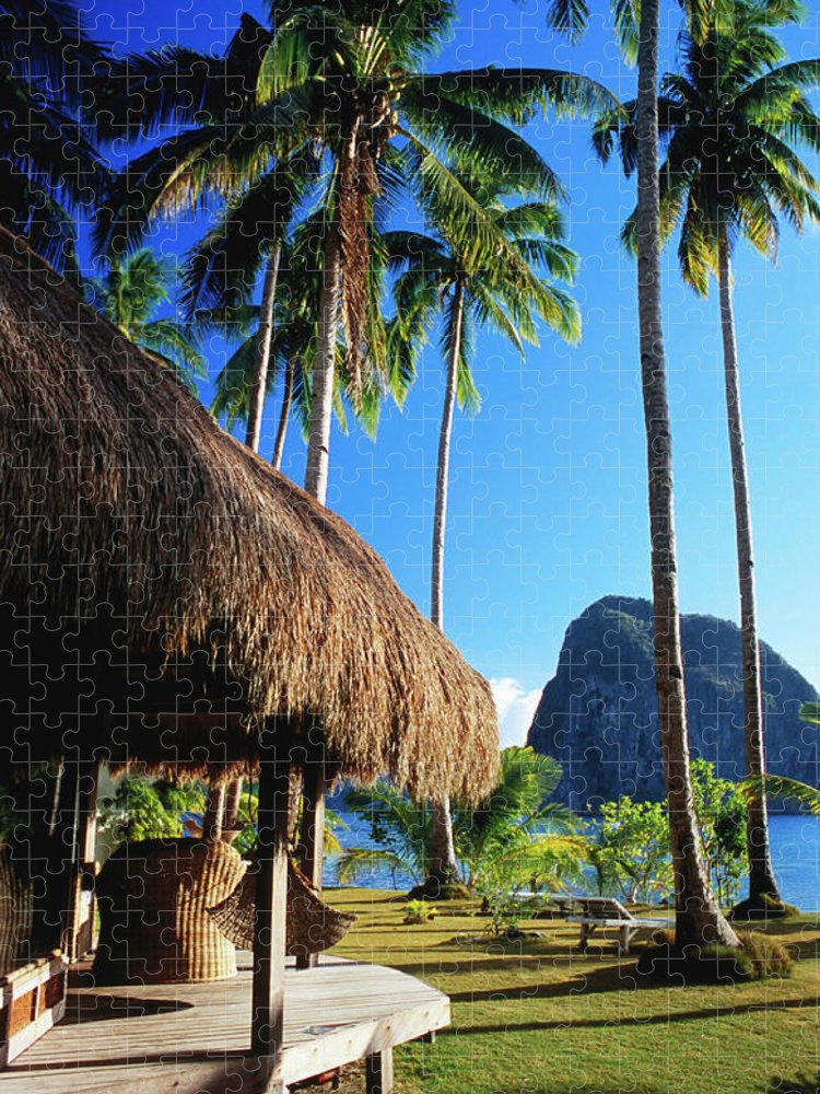 Tropical Tree Puzzle featuring the photograph Dolarog Beach Resort With Inabuyatan by Dallas Stribley