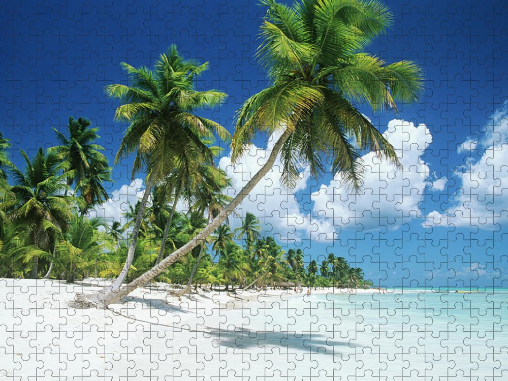 Scenics Puzzle featuring the photograph Dominican Republic, Saona Island, Palm by Stefano Stefani