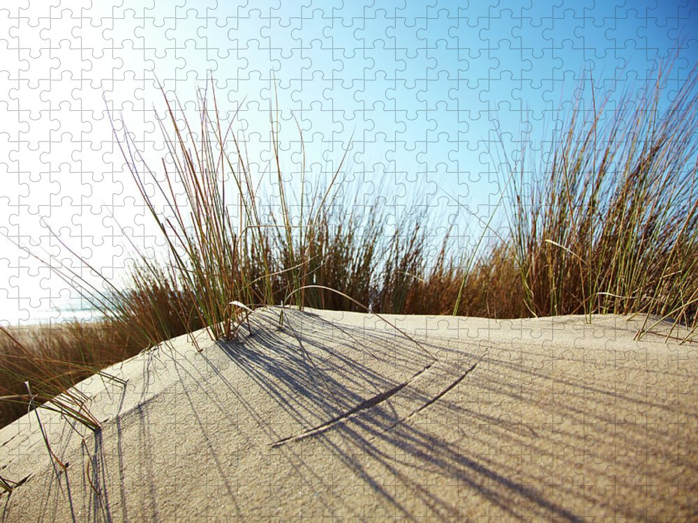 Tranquility Puzzle featuring the photograph Dune Grass On A Sand Dune At The Beach by Thomas Northcut