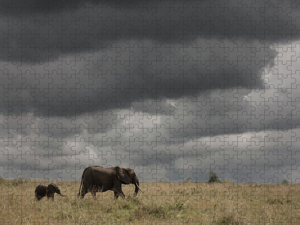 Kenya Puzzle featuring the photograph Elephant Under Cloudy Sky by Buena Vista Images