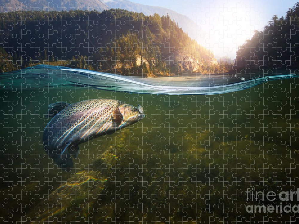Flare Puzzle featuring the photograph Fishing Close-up Shut Of A Fish Hook by Rocksweeper