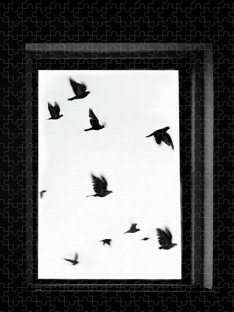 Spooky Puzzle featuring the photograph Flock Of Crows Seen Through A Window by Grant Faint