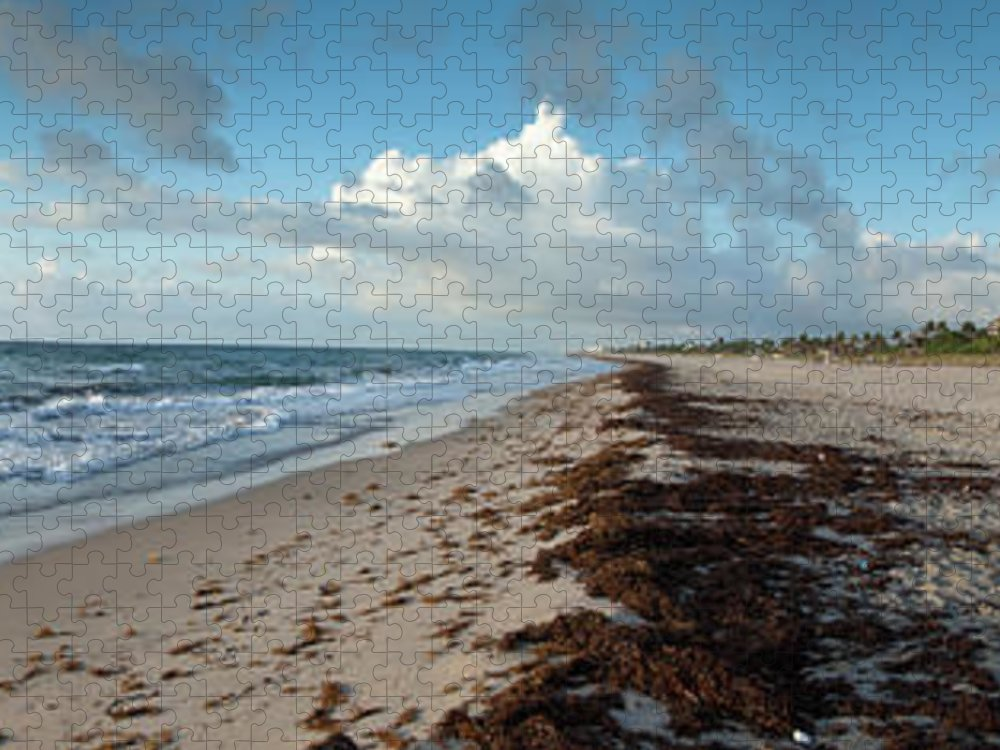 Scenics Puzzle featuring the photograph Florida Beach With Gentle Waves And by Drnadig