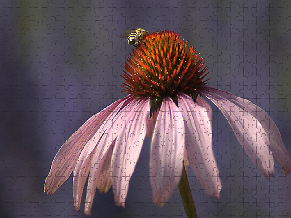 Insect Puzzle featuring the photograph Flower And Bee by Bob Van Den Berg Photography