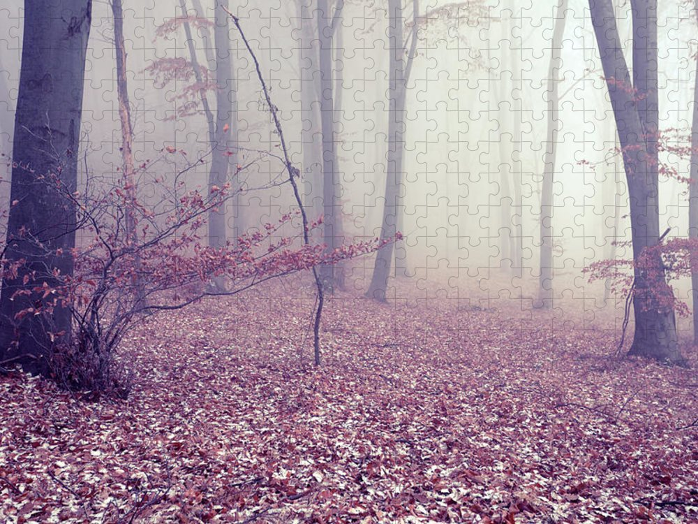 Spooky Puzzle featuring the photograph Fog by Floriana