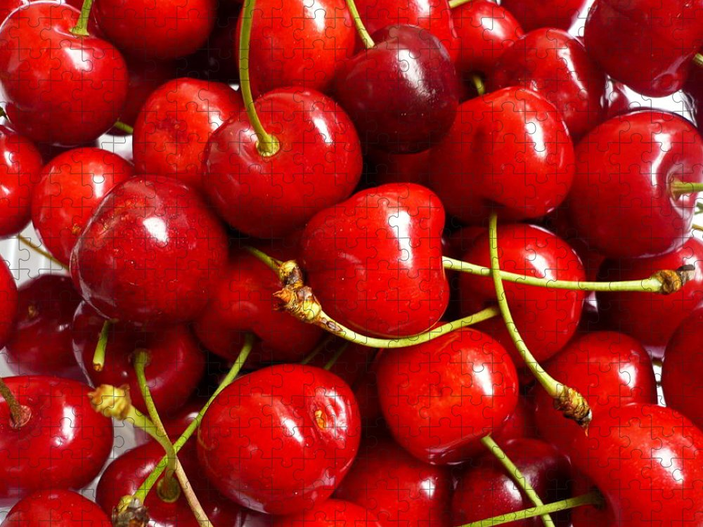 Cherry Puzzle featuring the photograph Fresh Red Cherries by Vienna Mornings