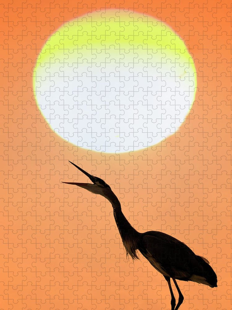 Animal Themes Puzzle featuring the photograph Great Blue Heron, Screeching, Sunset by Mark Newman