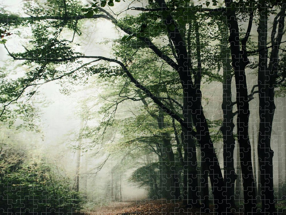 Scenics Puzzle featuring the photograph Haunted Forest by Bob Van Den Berg Photography