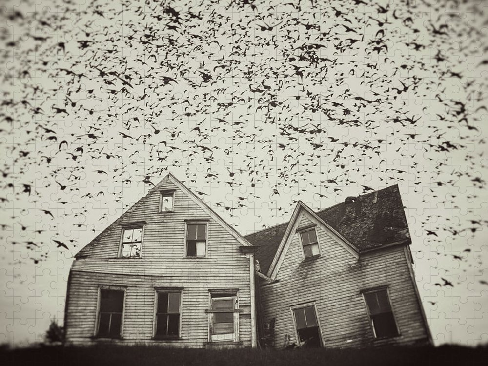 Spooky Puzzle featuring the photograph Home Of Murmuration by Shaunl