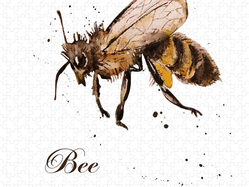Antenna Puzzle featuring the digital art Honey Bee Watercolor Isolation by Knopazyzy