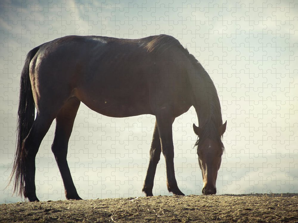 Horse Puzzle featuring the photograph Horse In Wild by Arman Zhenikeyev - Professional Photographer From Kazakhstan