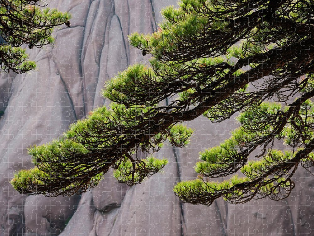 Chinese Culture Puzzle featuring the photograph Huang Shan Landscape, China by Mint Images/ Art Wolfe