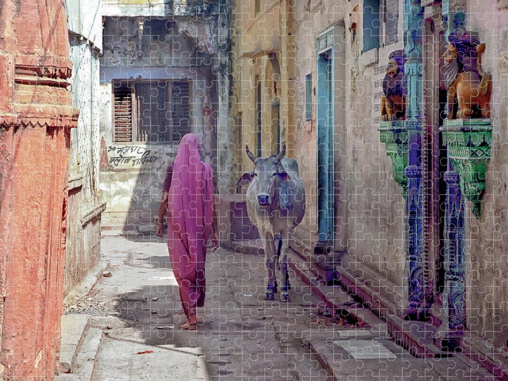 Horned Puzzle featuring the photograph India Lady And Cow by Glenn Losack