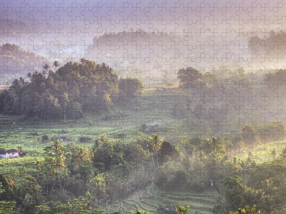 Tranquility Puzzle featuring the photograph Indonesia, Bali, Forest Landscape by Michele Falzone