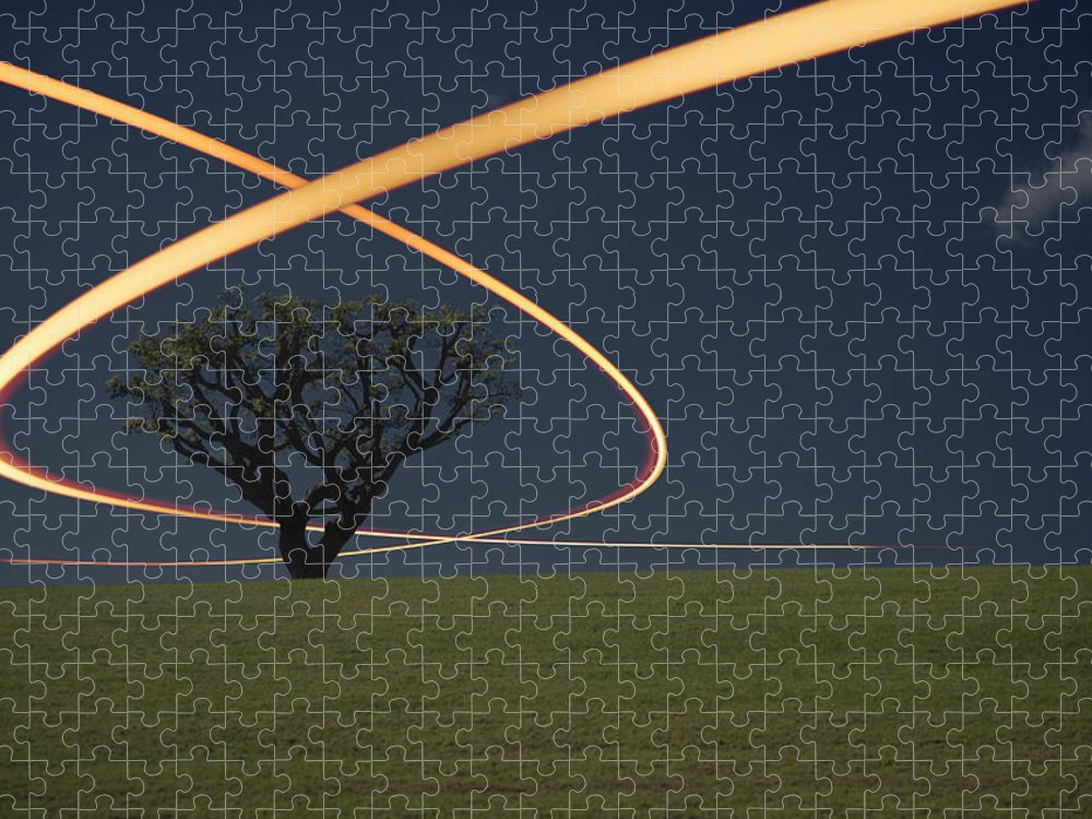Scenics Puzzle featuring the photograph Light Trails Around Tree by Paul Taylor