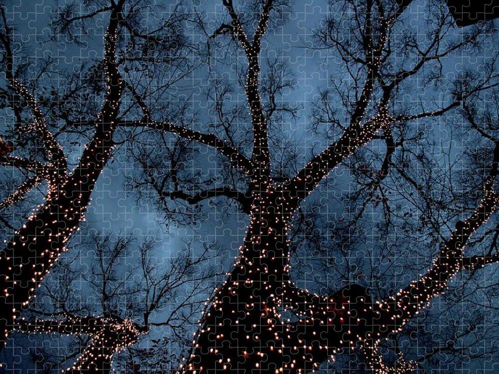 Celebration Puzzle featuring the photograph Lightings On Zelkova Tree by Jun Okada