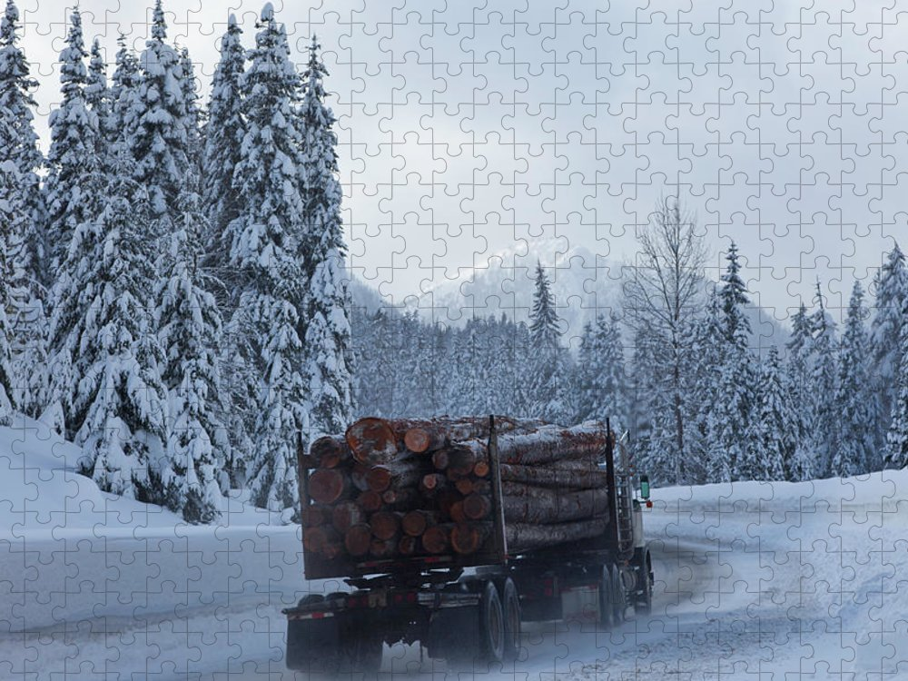 Snow Puzzle featuring the photograph Logging Truck In Winter by Steve Satushek