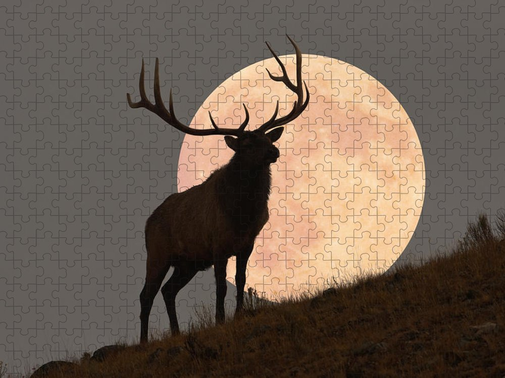 Horned Puzzle featuring the photograph Majestic Bull Elk And Full Moon Rise by Mark Miller Photos