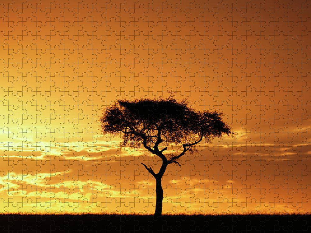 Tranquility Puzzle featuring the photograph Masai Mara National Game Reserve, Kenya by William Manning