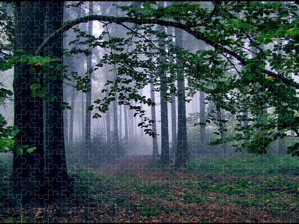 Tranquility Puzzle featuring the photograph Misty Forest by Photo - Riana Navrátilová