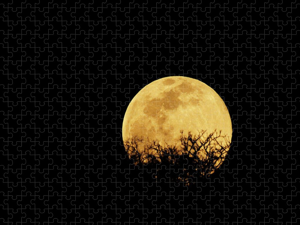 Horror Puzzle featuring the photograph Moon Rise by Rollingearth