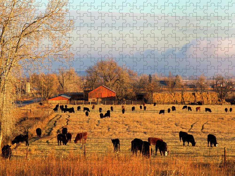 Scenics Puzzle featuring the photograph Morning Farm Scene by Beklaus