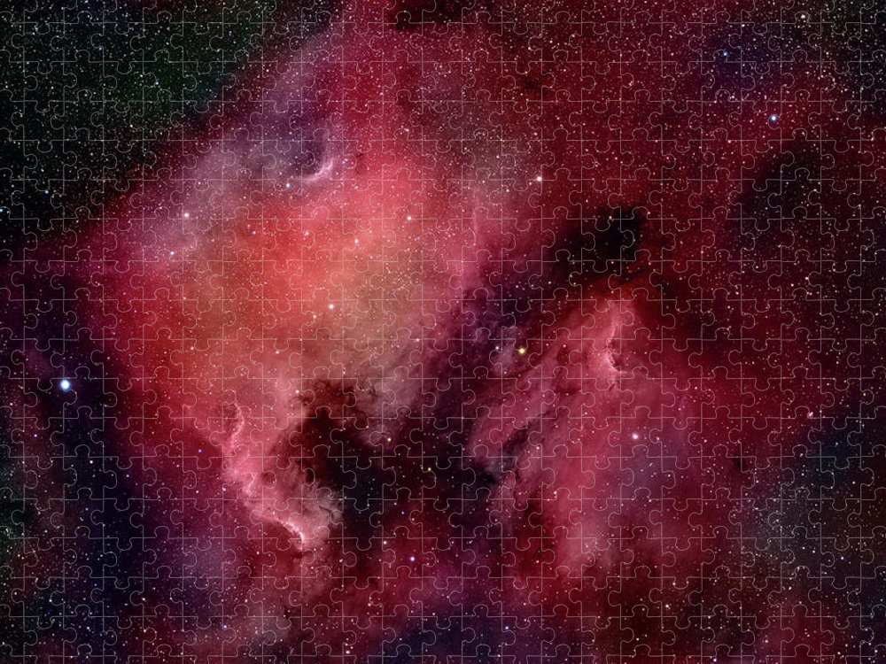 Majestic Puzzle featuring the photograph Nebulae In Cygnus by Plefevre