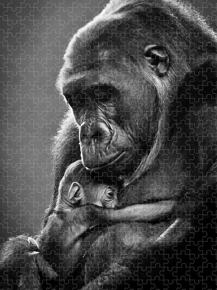 Cantabria Puzzle featuring the photograph New Mother Gorilla by Raúl González Fernández