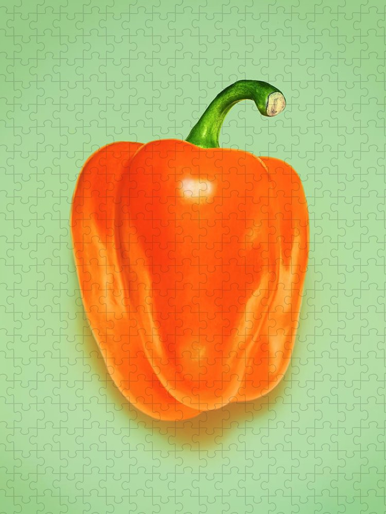 Orange Color Puzzle featuring the photograph Orange Pepper by Adrian Burke