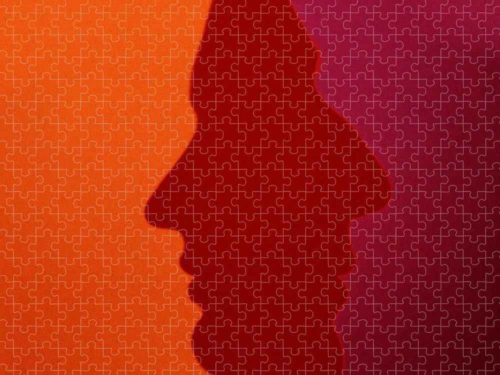 Orange Color Puzzle featuring the photograph Overlapping Silhouette Profiles by Tim Platt