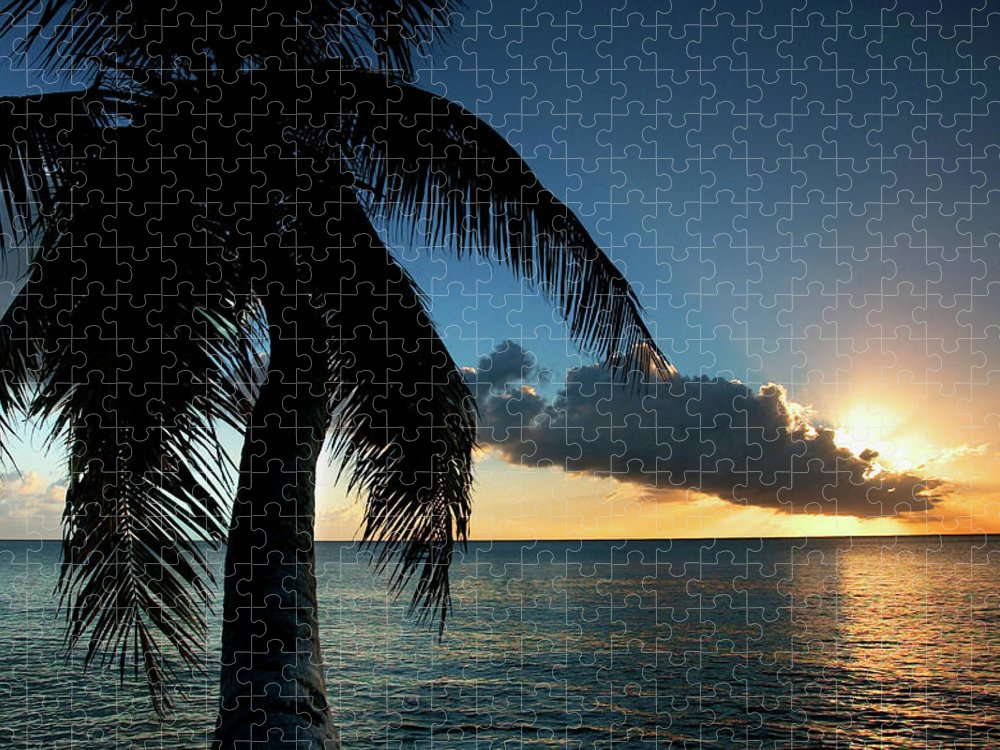 Scenics Puzzle featuring the photograph Palm Tree And Ocean At Sunset by Medioimages/photodisc