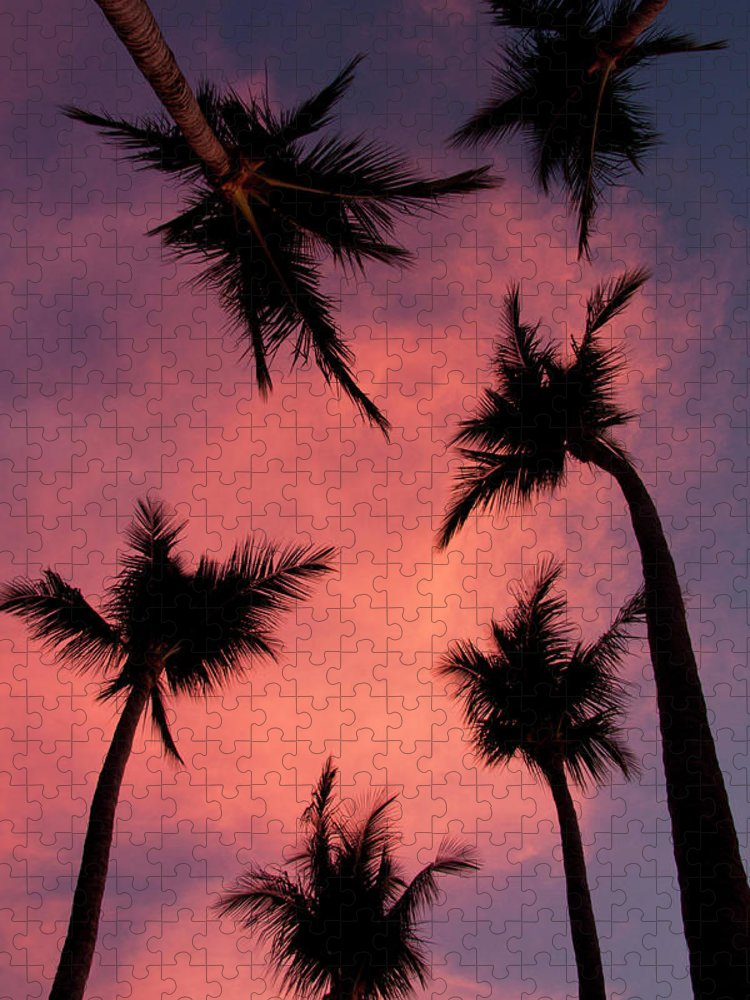 Tranquility Puzzle featuring the photograph Palm Trees Against Pink Sky by Kenneth Stensrud