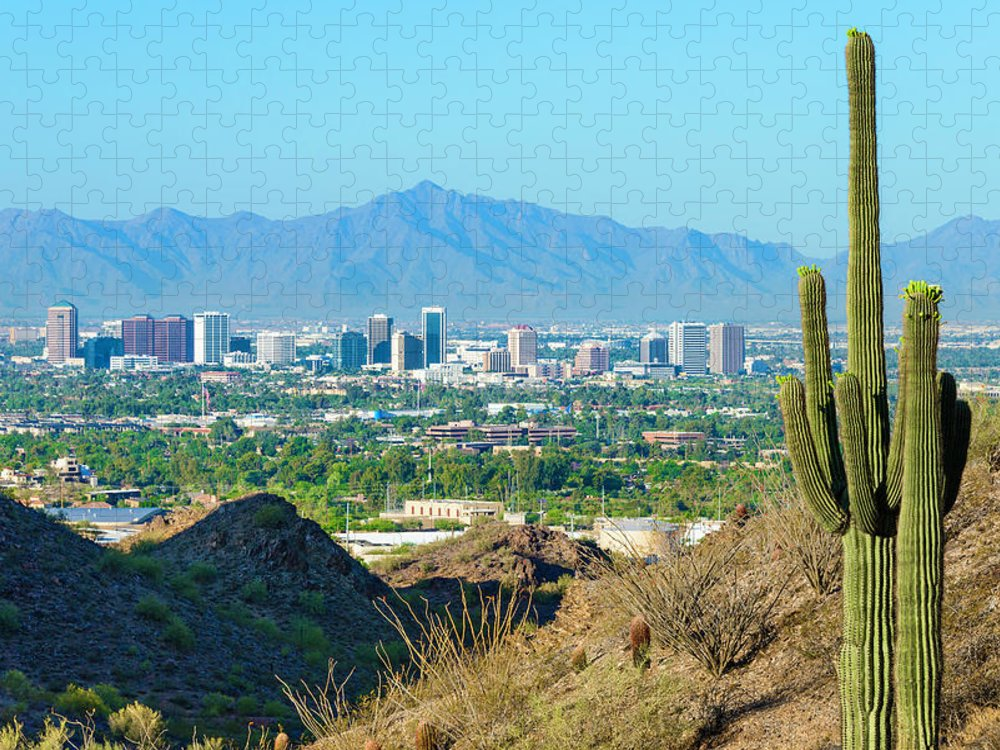 Saguaro Cactus Puzzle featuring the photograph Phoenix Skyline Framed By Saguaro by Dszc