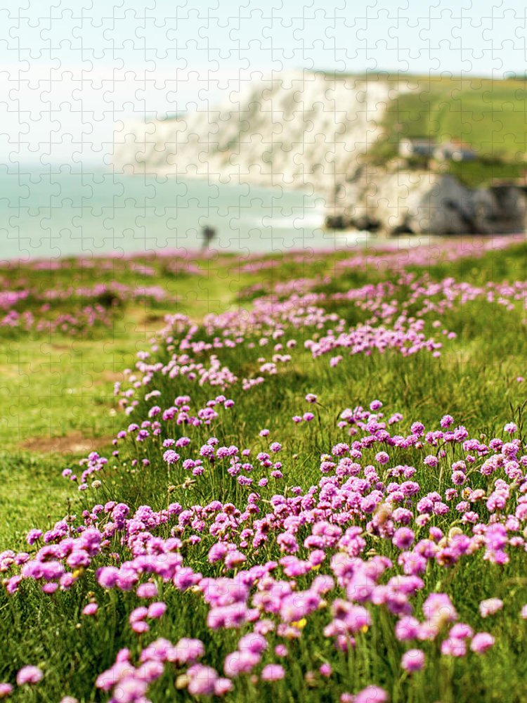 Scenics Puzzle featuring the photograph Pink Coastal Path by S0ulsurfing - Jason Swain