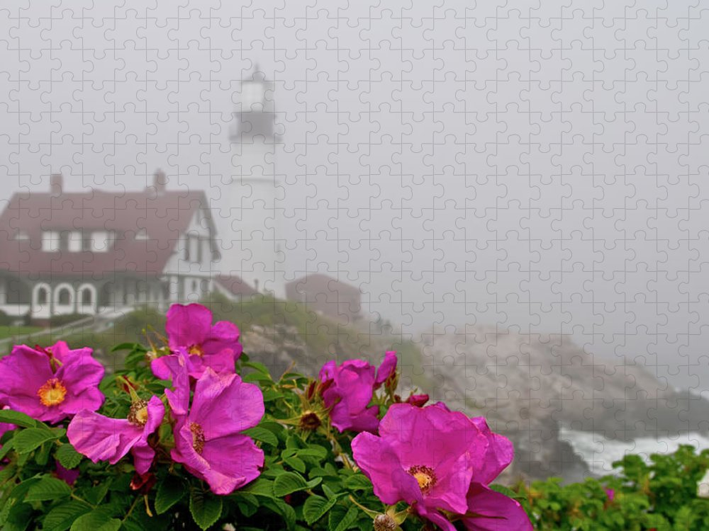 Built Structure Puzzle featuring the photograph Portland Headlight With Rosa Rugosa And by Www.cfwphotography.com