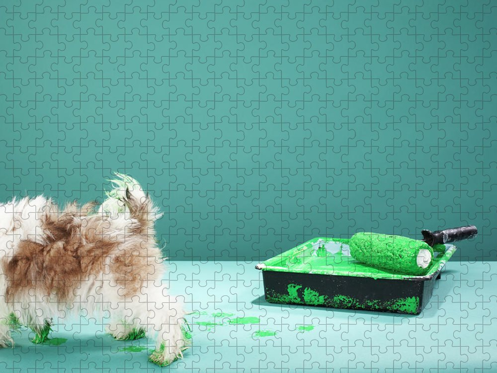 Pets Puzzle featuring the photograph Puppy Making Green Paw Prints From by Martin Poole