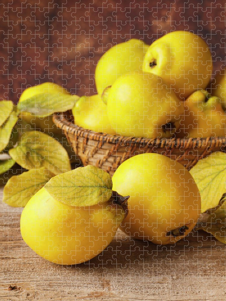 Quince Puzzle featuring the photograph Quinces by Syolacan
