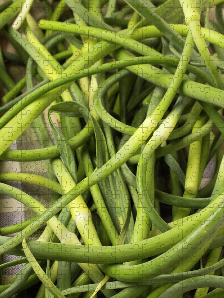 Season Puzzle featuring the photograph Raw Garlic Scapes by Brian Yarvin