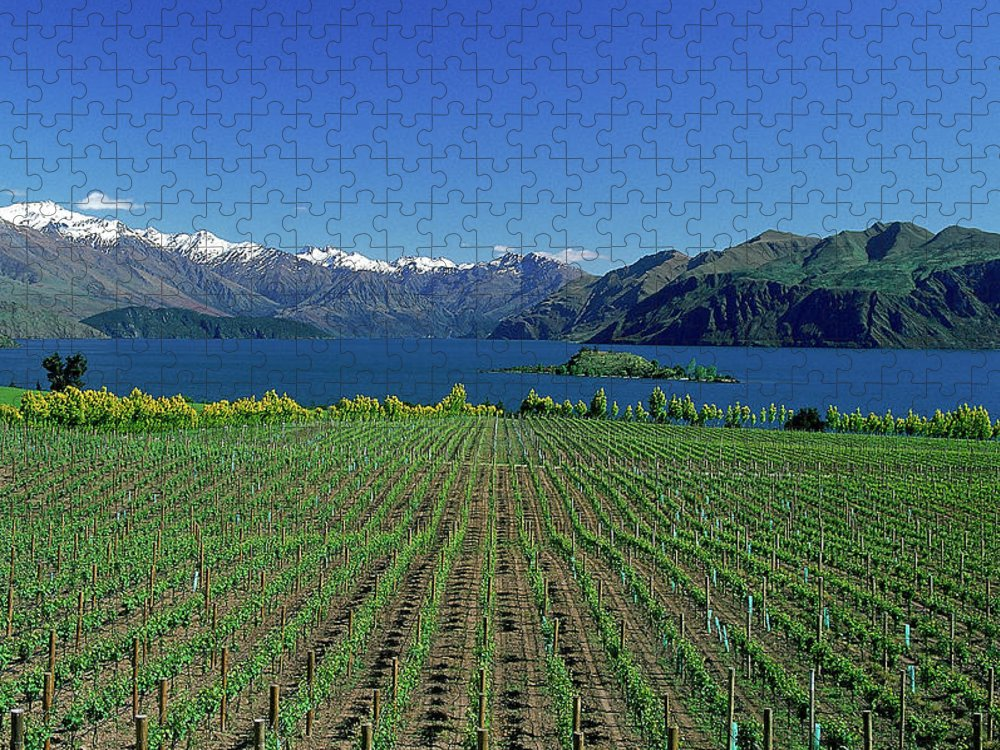 Snow Puzzle featuring the photograph Rippon Vineyard & Lake Wanaka, South by Robin Smith