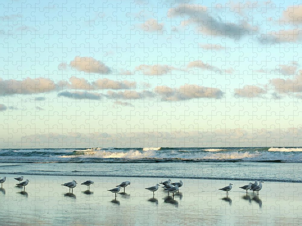Working Puzzle featuring the photograph Seagulls In Heaven V2 by Breecedownunder