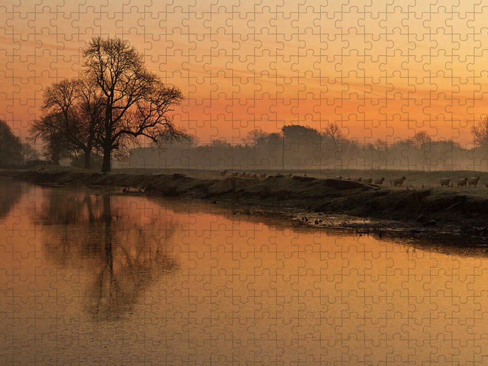 Scenics Puzzle featuring the photograph Sheep Sunrise by Paulscreen