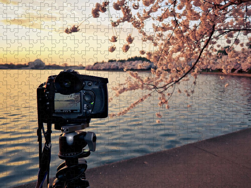 Tidal Basin Puzzle featuring the photograph Shooting Cherry Blossoms In Washington by Camrocker