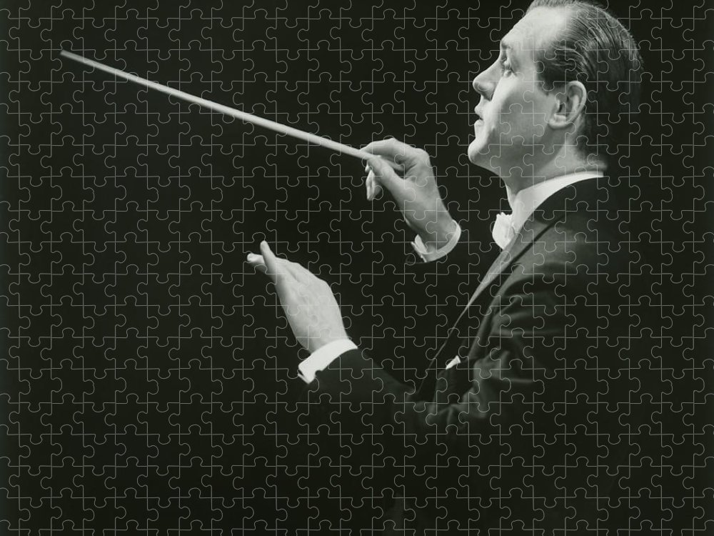 Musical Conductor Puzzle featuring the photograph Side View Of Conductor by George Marks