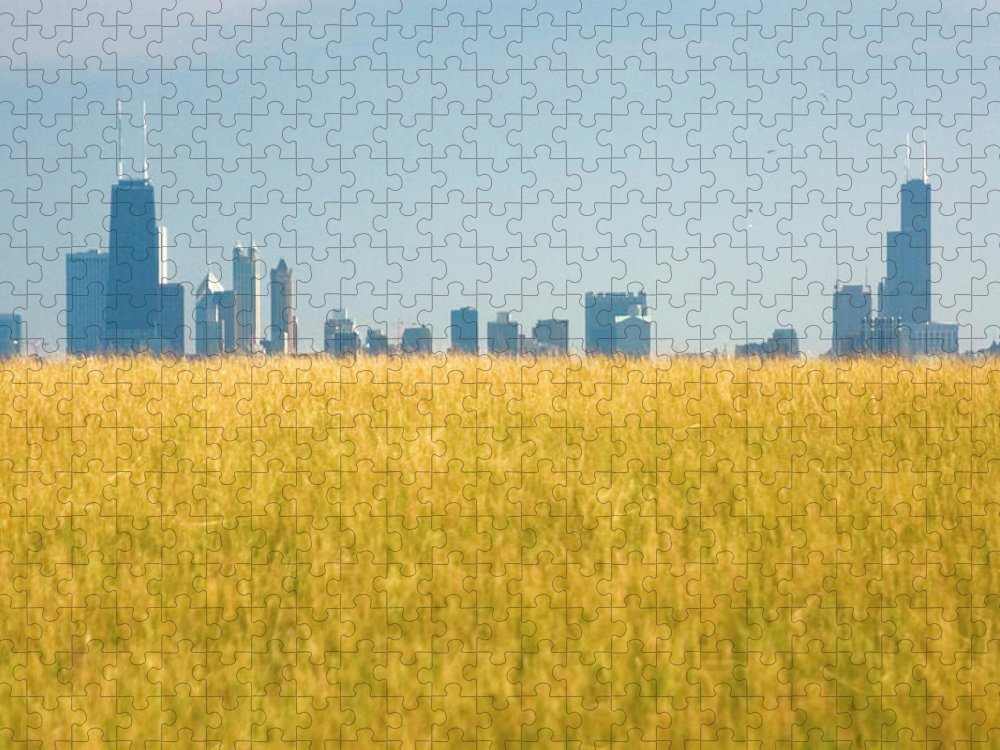 Grass Puzzle featuring the photograph Skyscrapers Arising From Grass by By Ken Ilio