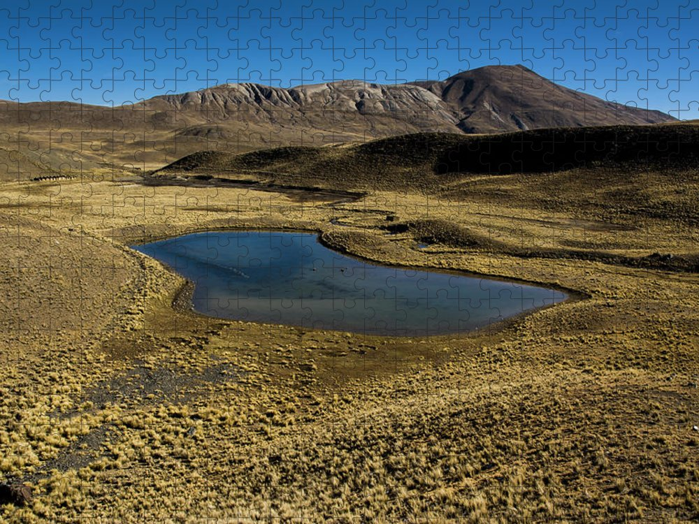 Tranquility Puzzle featuring the photograph Small Lagoon In Condoriri National Park by © Santiago Urquijo