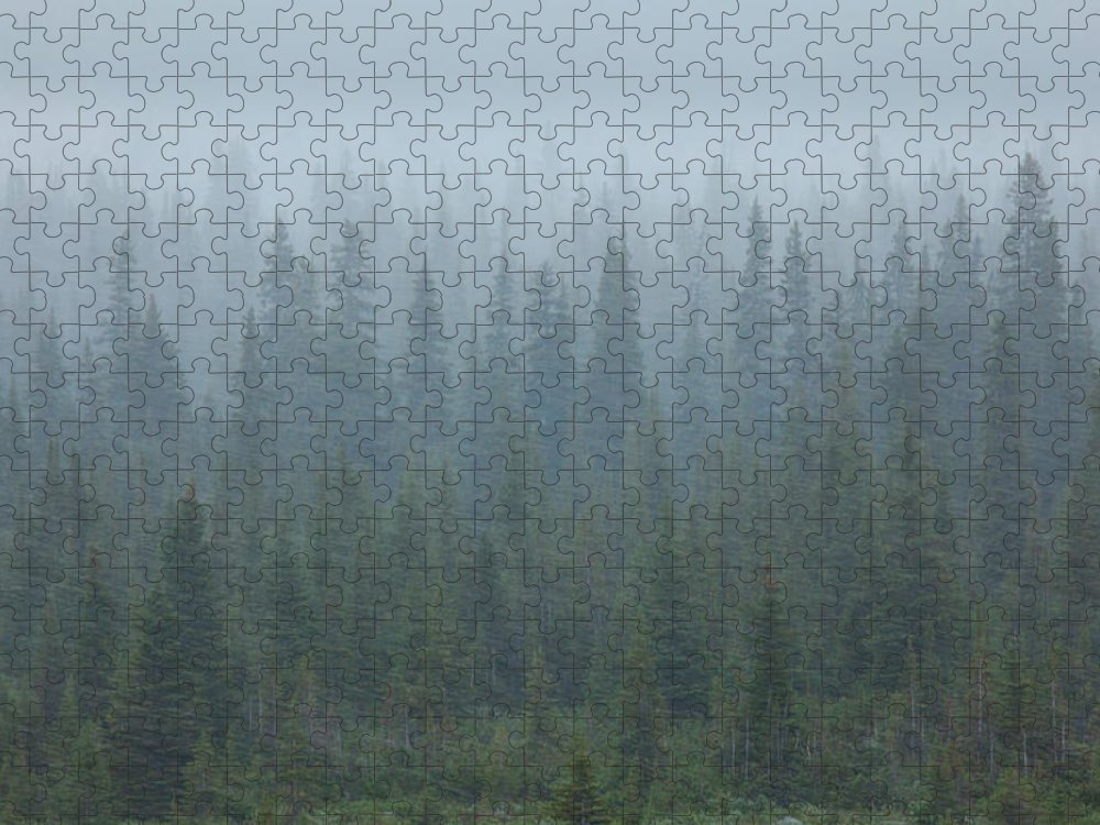 Unesco Puzzle featuring the photograph Snow Storm In The Forests Of Jasper by Mint Images/ Art Wolfe