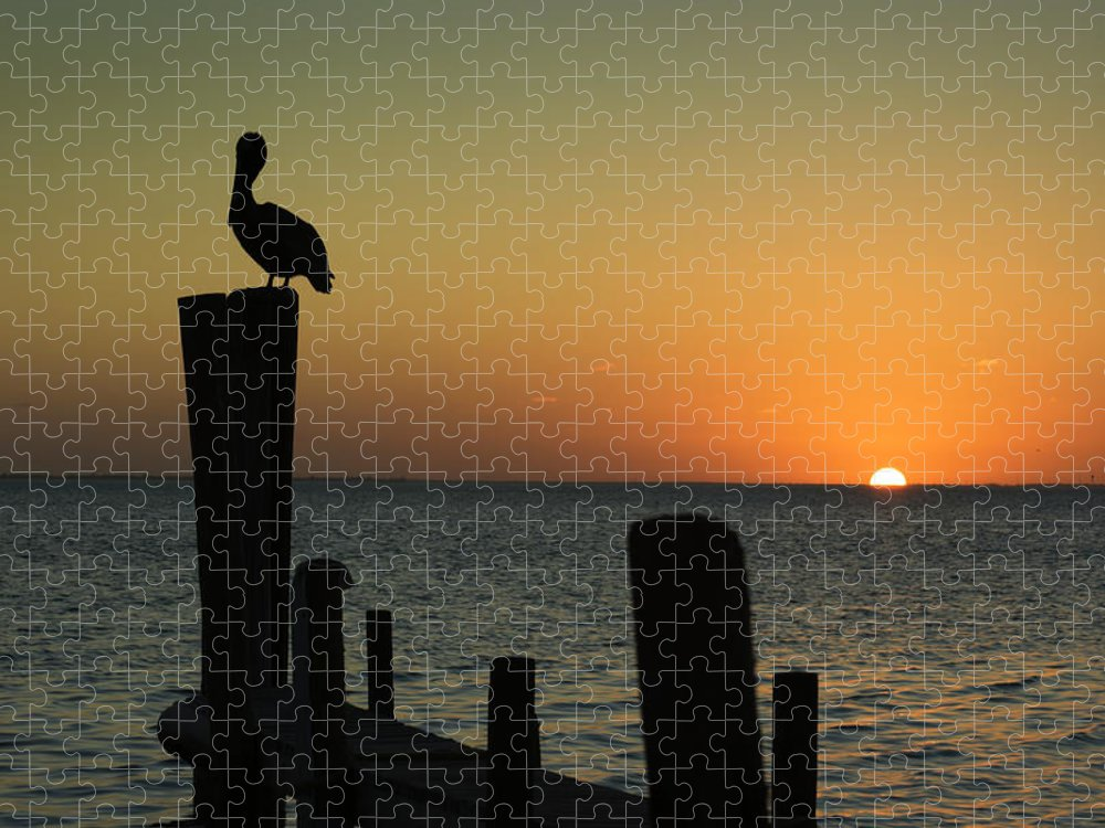 Orange Color Puzzle featuring the photograph South Padre Island, Texas Sunset With by Yangyin